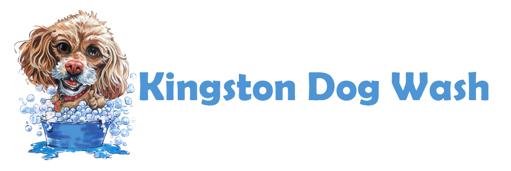 Home page kingston dogwash kingston dogwash logo solutioingenieria Images