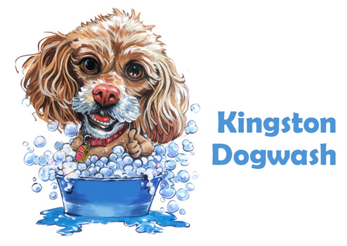 Kingston Dog Wash